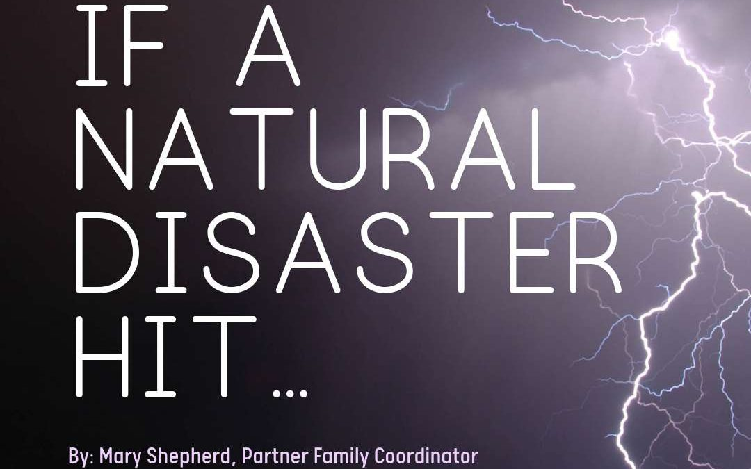 If A Natural Disaster Hit…
