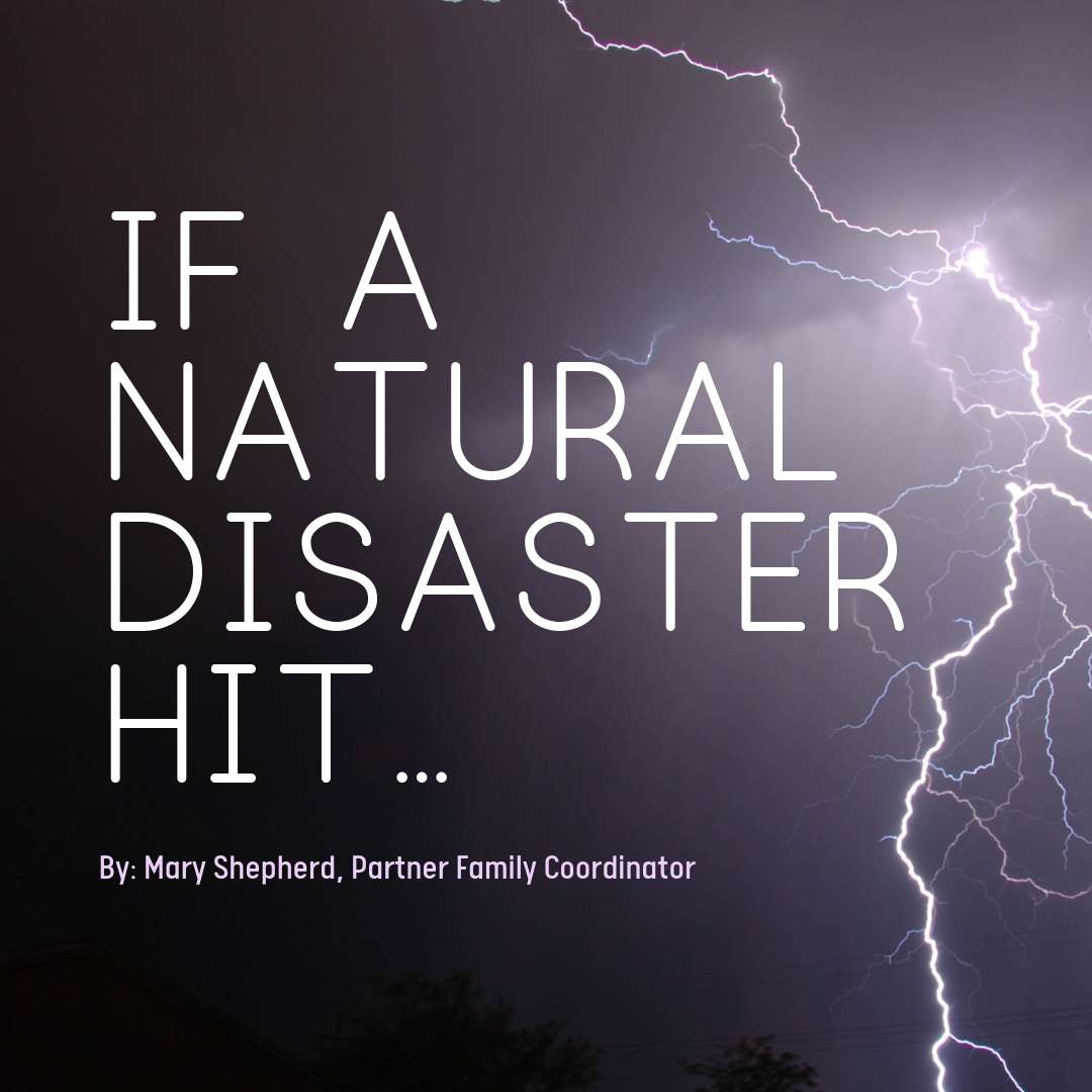 If A Natural Disaster Hit...